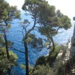 Portofino il faro