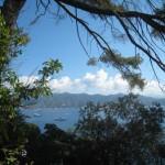 Portofino: castello brown